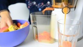 Preparing fruits juice Stock Images