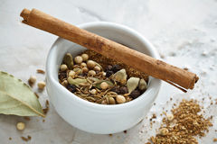 Preparing Garam Masala Royalty Free Stock Image