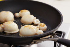 Preparing grilled cuttlefish in a pan Royalty Free Stock Image