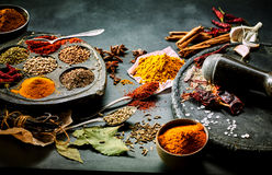 Preparing ground spices for Asian cuisine. With a still life arrangement of assorted aromatic and pungent seasoning with a pestle and mortar Royalty Free Stock Photos