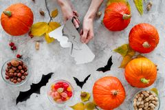 Preparing for halloween. Hands cut bats out of paper. Figures and pumpkins on grey background top view.  Royalty Free Stock Photo