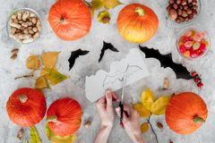 Preparing for halloween. Hands cut bats out of paper. Figures and pumpkins on grey background top view.  Stock Images
