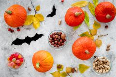Preparing for halloween. Pumpkins and paper bats on grey background top view.  Stock Image