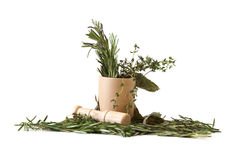 Preparing Herbs Royalty Free Stock Photography