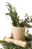 Preparing Herbs Stock Photos