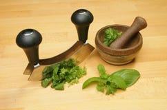 Preparing herbs Stock Image
