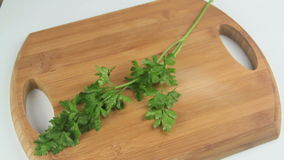 Preparing Herbs stock footage