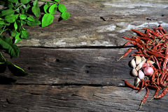Preparing for Herbs and spices on a wooden board. Stock Photography