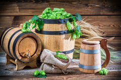 Preparing for home beer brewing Royalty Free Stock Photography