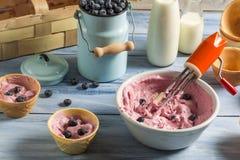 Preparing homemade fruit ice cream Stock Photos