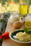 Preparing homemade margarine Stock Images