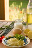 Preparing homemade margarine Royalty Free Stock Photos