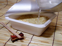 Preparing instant soba royalty free stock photography