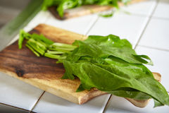 Preparing Japanese spinach sauted Stock Photo