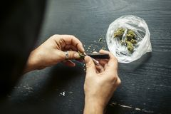 Preparing marijuana cannabis joint. Drugs narcotic concept. Close up royalty free stock photos