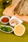 Preparing a marinade Stock Photography
