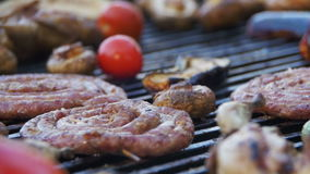 Preparing Meat and Vegetables on the Grill. Slow Motion stock footage