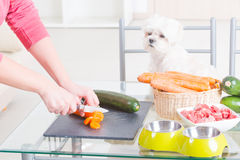 Preparing natural food for pets Royalty Free Stock Images