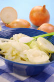 Preparing onion syrup Stock Images