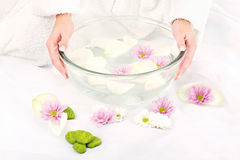 Preparing petal bath Royalty Free Stock Photo
