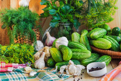 Preparing pickling cucumbers various components Stock Photo