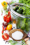 Preparing preserves of pickled cucumbers and tomatoes Royalty Free Stock Image