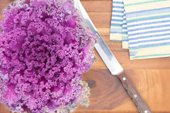 Preparing purple kale for cooking Royalty Free Stock Images