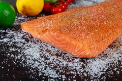 Preparing raw salmon fillet with lemon on a dark slate plate, view from above. Vegetarian food concept. Vegetarian food concept preparing raw salmon fillet with royalty free stock image