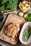Preparing roast chicken with herbs and vegetables Stock Images