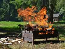 Preparing a Romanian traditional grill with bright flame on a wild area with a grass and pine forest background Royalty Free Stock Images