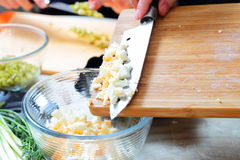 Preparing russian traditional salad Olivier Royalty Free Stock Images