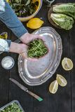 Preparing salad of arugula. Natural light royalty free stock photos