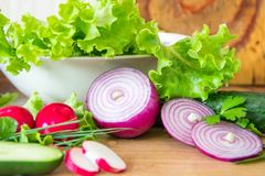 Preparing salad on the kitchen. Sliced radish, lettuce, cucumber,red onion and fresh herbs.  Stock Image