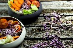 Preparing salad with radish sprouts, carott, green salad, tomato Royalty Free Stock Photos