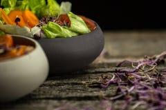 Preparing salad with radish sprouts, carott, green salad, tomato Stock Photos