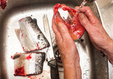 Preparing salmon for cooking Royalty Free Stock Image