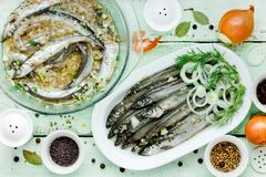 Preparing salted capelin, fish preserves. Top view Stock Photography