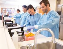 Preparing Samples for Referral. Team of lab technicians preparing samples for referral in clinic royalty free stock photography