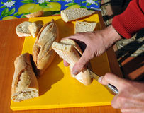 Preparing sandwiches for snack Royalty Free Stock Image