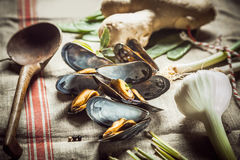 Preparing a savory mussel starter Royalty Free Stock Photos