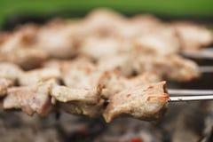 Preparing shashlik on a picnic outdoors Stock Photography