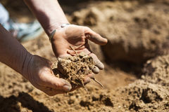 Preparing The Soil Stock Photo