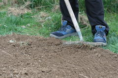 Preparing soil for planting Stock Photography