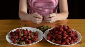 Preparing strawberries for jam stock video footage