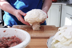 Preparing stuffed cabbage, Polish cuisine specialty. Royalty Free Stock Photo