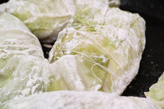 Preparing stuffed cabbage, Polish cuisine specialty. Stock Photography
