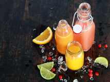 Preparing tasty healthy summer fruit juices Royalty Free Stock Photo