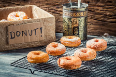 Preparing to decorate donuts with powder sugar Stock Image