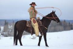 Preparing to lasso a horse. Cowboy preparing to lasso a horse Stock Photo