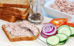 Preparing a tuna salad sandwich Royalty Free Stock Images